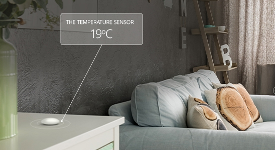 Temperature Sensor 19ºC